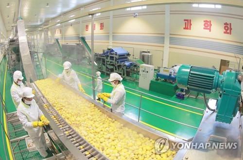 N.K. leader visits potato factory