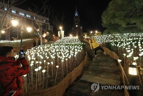 Jardin de roses en LED