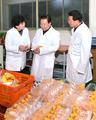 崔龙海视察食品工厂
