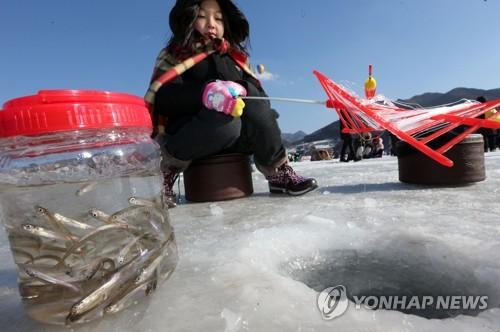 은빛 요정 빙어가 한가득[연합뉴스 자료사진]