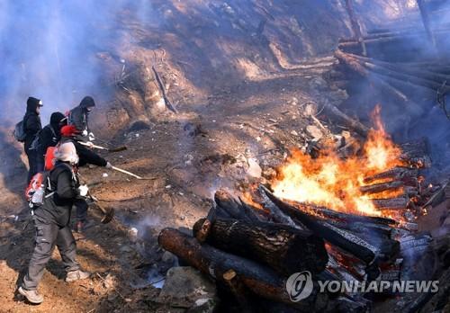 화마 속 진화대의 사투 [연합뉴스 자료 사진]