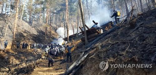 올림픽 지원 나온 경찰도 산불 진화