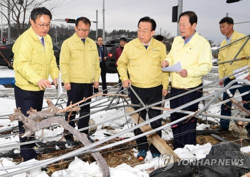 폭설 피해 현장 점검