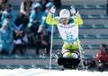朝鲜残疾健儿奋力滑行