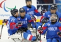 S. Korean men's ice sledge hockey team takes bronze