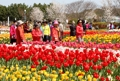 태안꽃축제추진위, 영구 귀국 사할린 동포 500명 초청 위문