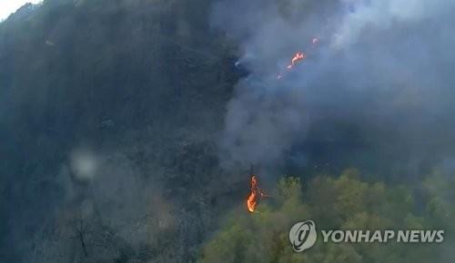 경기도 연천 DMZ 산불 [연합뉴스 자료사진]