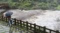전국에 돌풍 동반한 세찬 비…한라산 강수량 397㎜·서울 63㎜