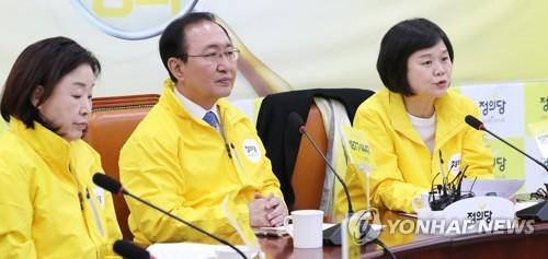 의원총회, 발언하는 이정미