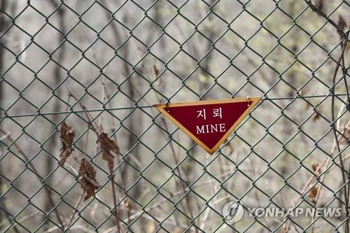비무장지대(DMZ)  [연합뉴스 자료사진]