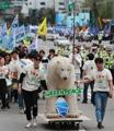 Des activistes de Greenpeace contre le réchauffement climatique