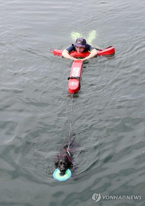 지난달 30일 부산해경 전용부두에서 인명구조 훈련을 하는 투투
