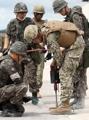 揺れる韓米軍事演習
