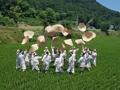 韩国互助帮农谣再现