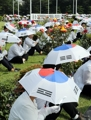 Taegeukgi umbrellas