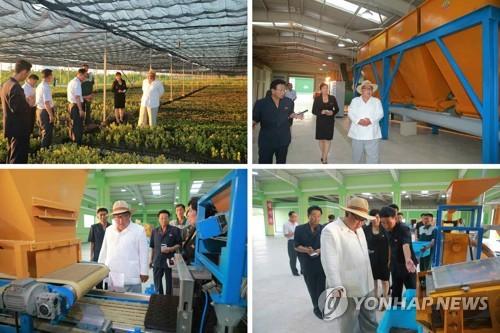 김정은, 강원도 양묘장 시찰…산림복구, 가장 중요한 과업