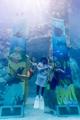 水族館の公演で学習