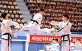 Taekwondo nord-coréen