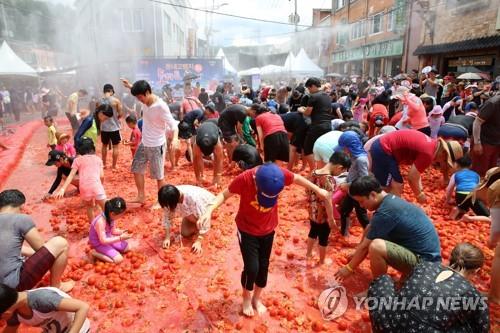 횡성 둔내 고랭지 토마토축제 개막 [연합뉴스 자료 사진]