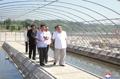 Kim Jong-un inspecciona una piscifactoría