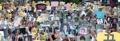 صور 300 ضحية للاستعباد الجنسي الياباني في مظاهرة الأربعاء
