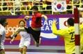 アジア大会・ハンド韓国 日本戦ドロー