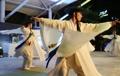 Traditional Korean crane dance