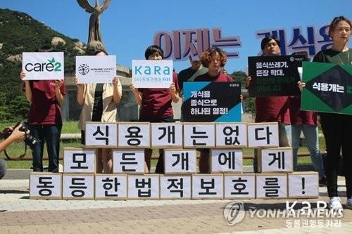 동물권단체, 개 식용 종식 촉구 [연합뉴스 자료 사진]