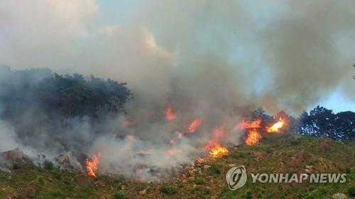 춘천 월곡리 산불 대부분 진화…산림 0.5㏊ 소실(종합)