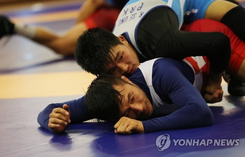 Koreas consider forming joint wrestling team at Tokyo Olympics