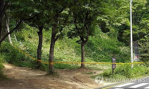 토막시신 발견된 서울대공원 주차장 인근 수풀