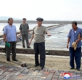 N. Korea's Premier Pak at salt works