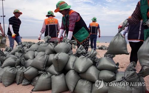 '해수욕장 모래로 태풍 대비하는 강릉 시민'