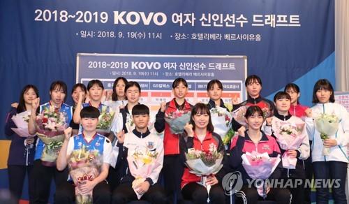 KOVO 이사회, 여자부 확률 추첨·트라이아웃 국내 개최 논의