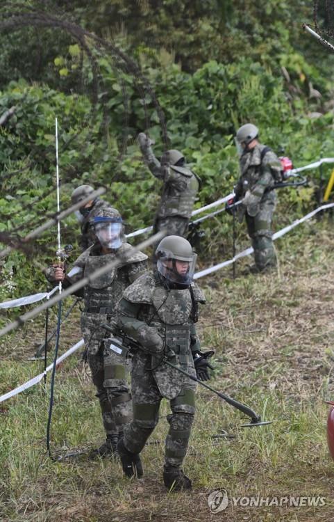 资料图片:10月2日,在非军事区扫雷现场,官兵们正在进行扫雷作业。(韩联社/陆军供图)