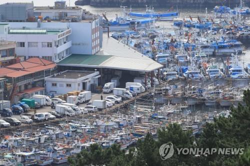 태풍 '콩레이' 북상에 서귀포항 '긴장'
