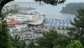 台風に備え港に停泊