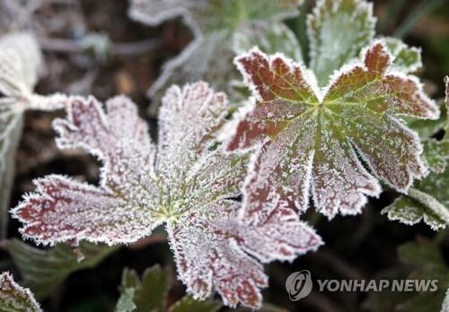 대전·충남 맑은 날씨…큰 일교차에 짙은 안개