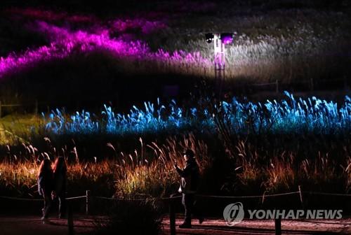 서울 하늘공원 18∼24일 억새축제…..