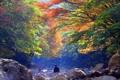 秋深まる漢拏山