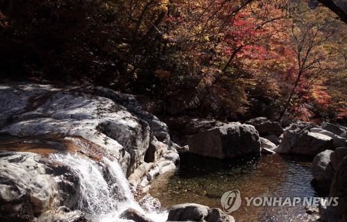"""전국 가을빛 절정…너도나도 산으로 """".."""