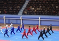 Demostración de taekwondo en Pyongyang