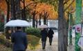 Direction le bureau sous la pluie