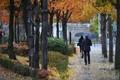 秋雨でPM一掃