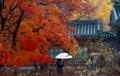 Turistas en el palacio real de Seúl