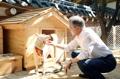 Una perra regalada por Corea del Norte da a luz a seis cachorros