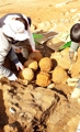 Timed bomb shells from Joseon Dynasty unearthed