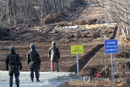 DMZ should be developed into symbol of peace: expert