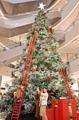 Grand sapin de Noël