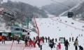 スキーシーズン到来